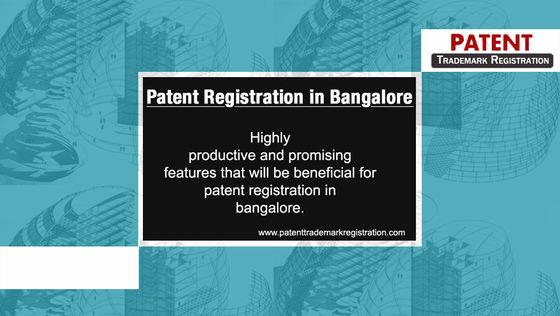 neemix patent essay